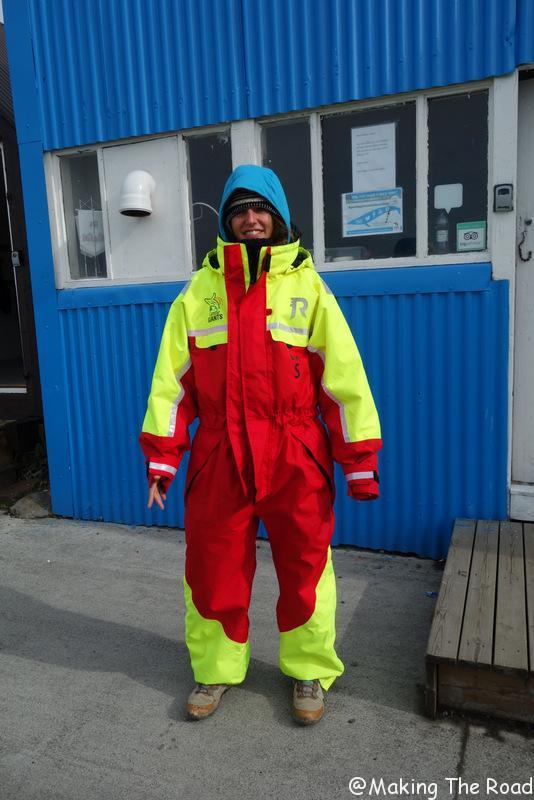 excursion baleines islande blog voyage