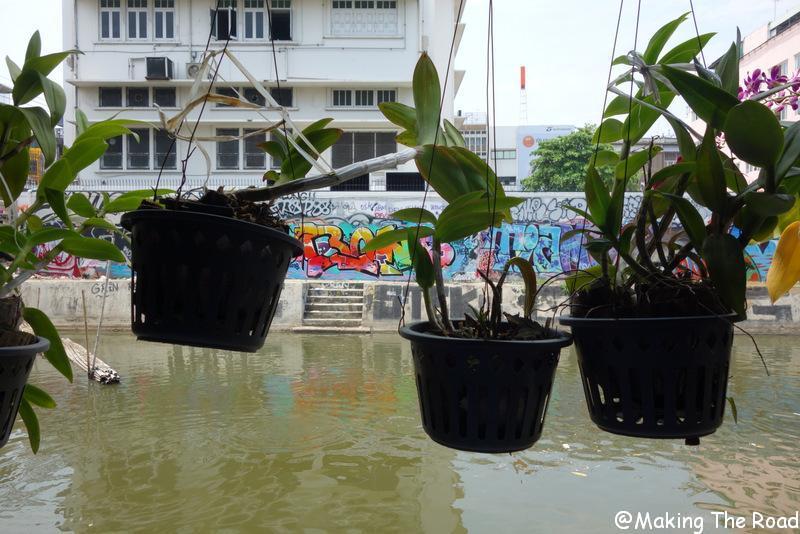 trajet bangkok koh lanta en 1 jour