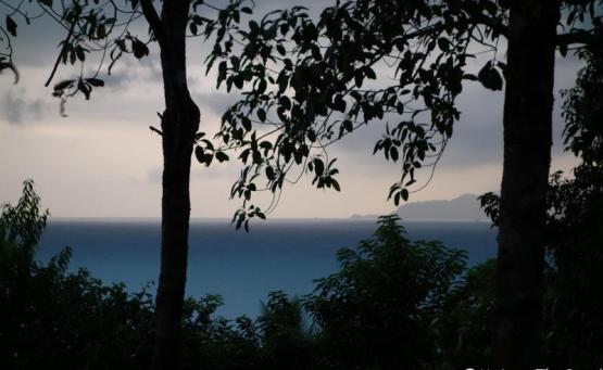 road trip costa rica bahia drake