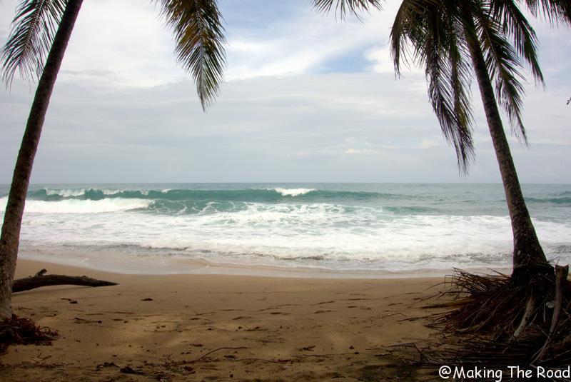 carnet de voyage road trip costa rica plage punta uva - voir paresseux aras