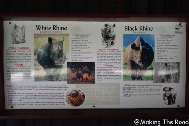 reserve afrique du sud Hluhluwe Umfolozi safari voir des rhinocéros
