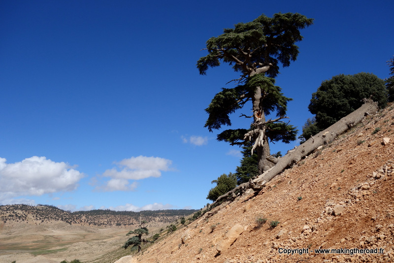 10 jours itineraire road trip maroc moyen atlas blog voyage