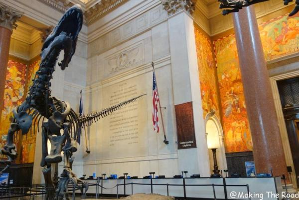 visiter new york museum natural history gratuit