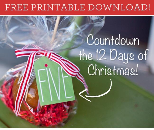 Free Printable 12 Days Of Christmas Countdown Making