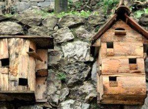 kus evi ahsap mimari Bu Mimariler Görülmeye Değer Osmanlı Zamanında Kuş Sevgisi ve Kuş Sarayları