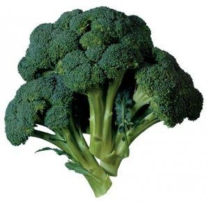 Brokoli Kuşlar İçin Şifalı Bitkiler