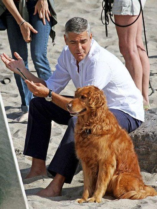 George-Clooney-39