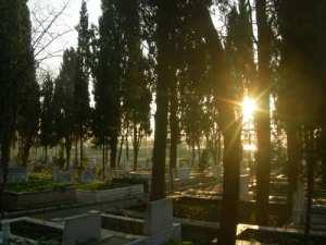 2 Mezarlara neden çiçek dikilir?