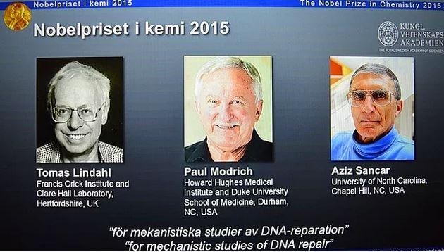 nobel-2015-kimya- 2015 Nobel Kimya Ödülünü Kazanan, Aziz Sancar ve Çalışmaları