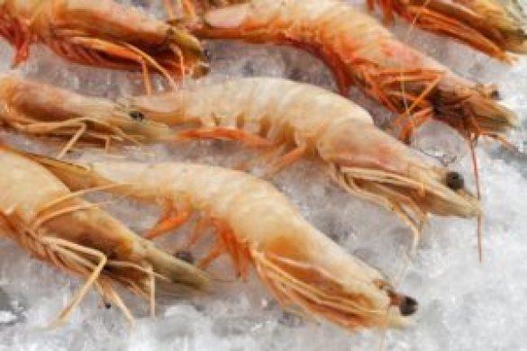 Kabuklu Deniz Ürünleri Nasıl Yenir ?