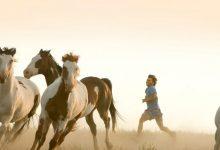 into the wild 1 1078x516 - Doğa İle Mücadele Konulu Film Önerileri