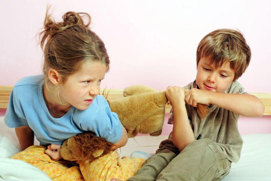 Kardeşler Arası Çatışma Nasıl Önlenir?