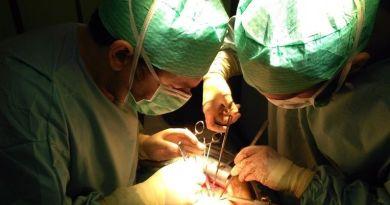 Las donaciones de órganos en Málaga se colocaron en la primera posición con 247 trasplantes hechos