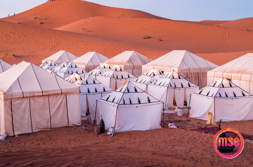 5 Reasons to join the SAHARA TRIP