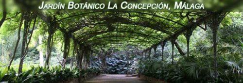 Botanical Garden in Malaga
