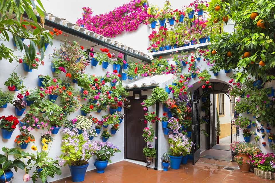 Festival of Patios in Cordoba, Spain