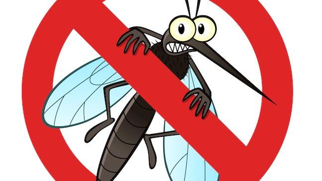 Wie vermeidet man Mückenstiche im Sommer