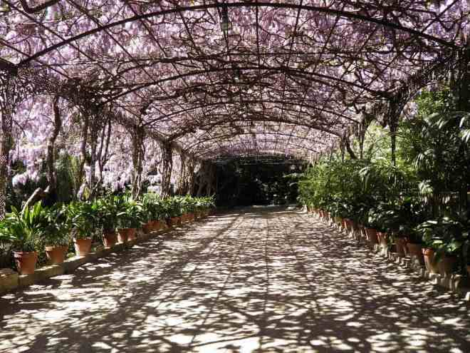 Botanical and Historical Garden in Malaga