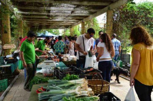 mercado-ecologico