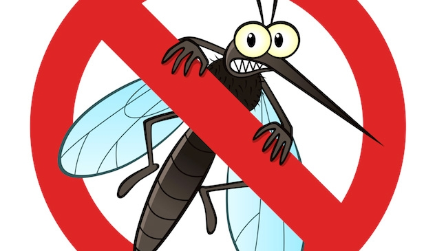 Pincha en el mosquito