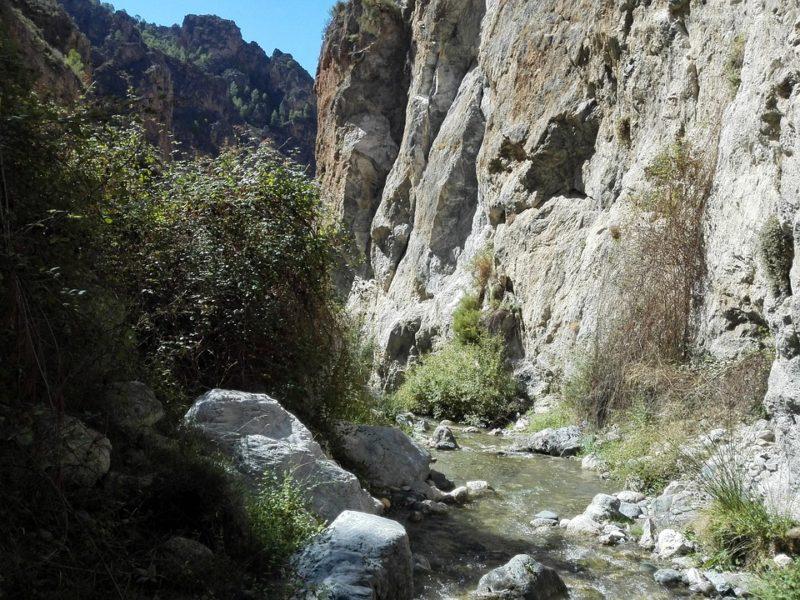 Otoño en Sierra Nevada