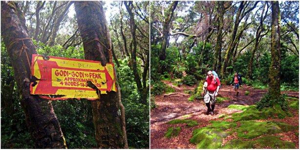Godi Godi Campsite during our Mt APO Climb