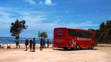 Photo of Pantai Malang yang Bisa Dilalui Bus Pariwisata