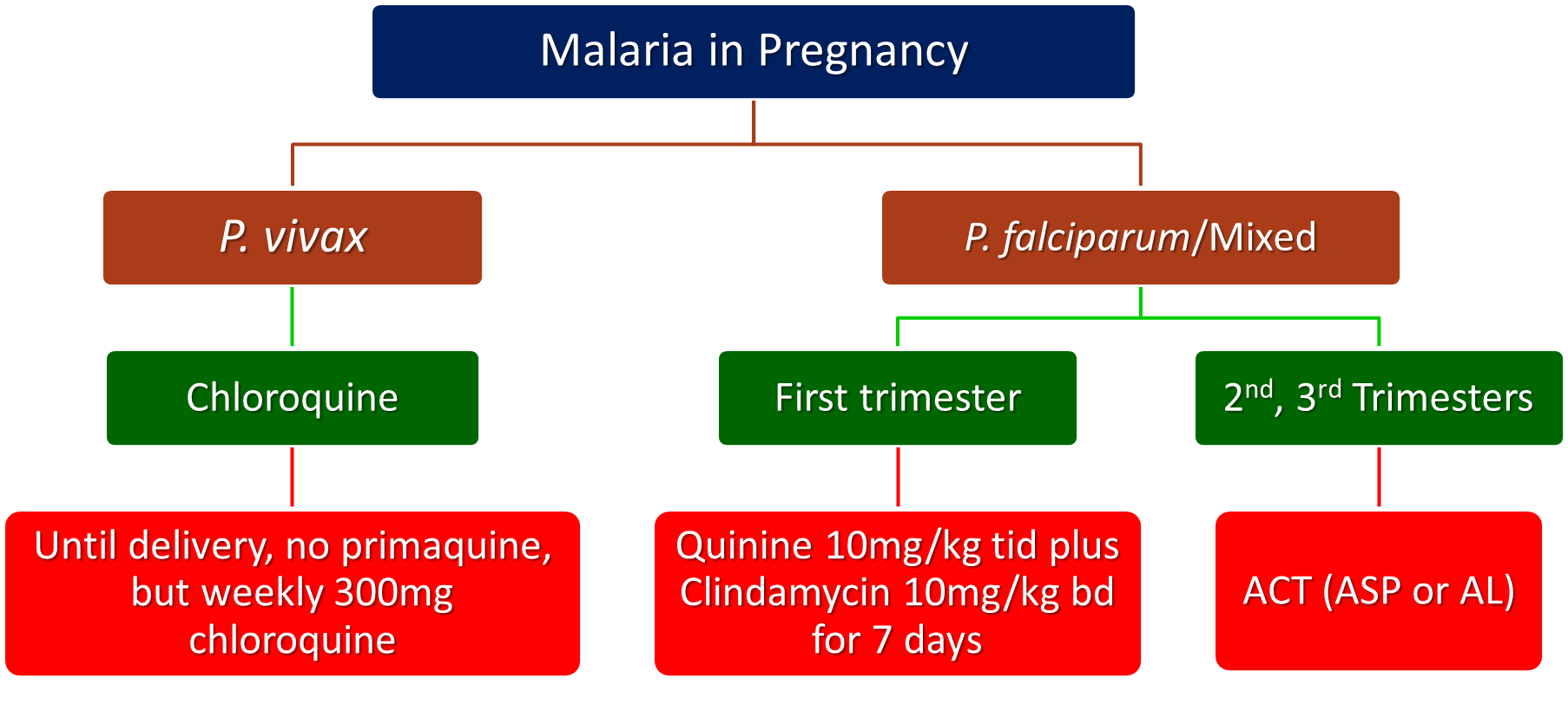 Treatment of Malaria – Malaria Site