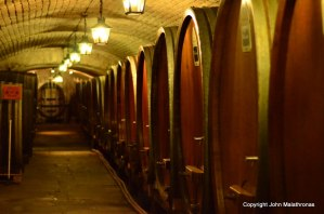 The Cellar at the Strasbourg Hospital