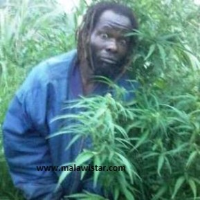 Bulelwa in his farm