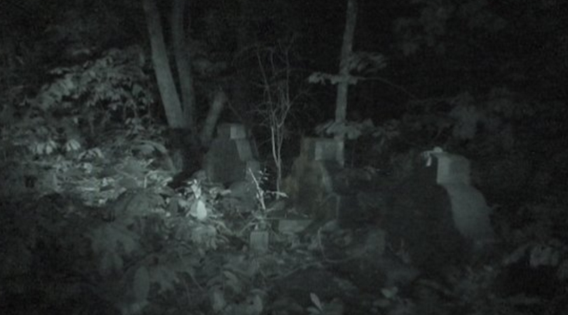 Ghost research in an abandoned cemetery.