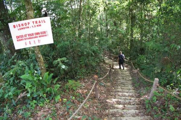 Bishop Trail, Fraser Hill