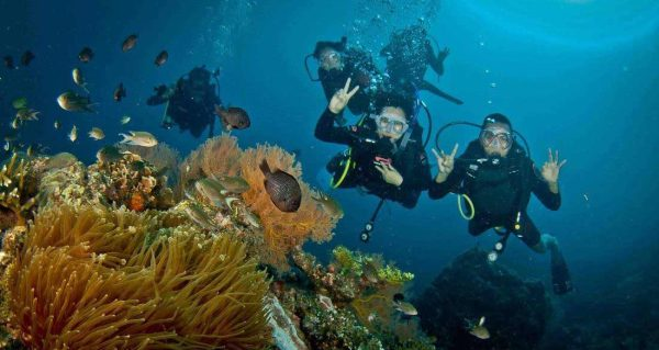 Scuba Dive Redang Island