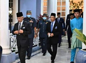 muhyiddin and the king