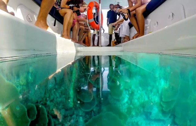 Image result for the maldives boat glass bottom