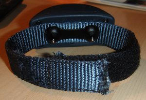 modified training collar