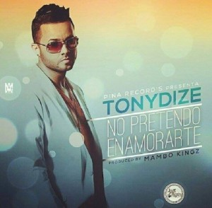 covertonydize-300x294