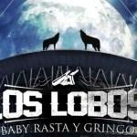 Los Lobos llegan al Choliseo