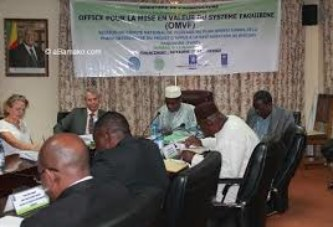 11ème Conseil d'administration de l'OMVF : Les activités d'envergure en perspectives