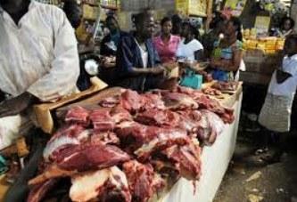 Programme de développement de la viande à l'exportation : A l'heure de la mobilisation des ressources financières
