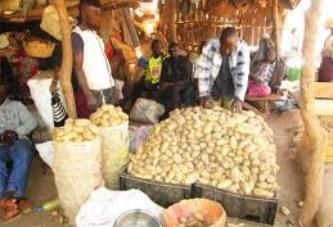 SEGOU : hausse des prix de certains produits alimentaires sur le marché