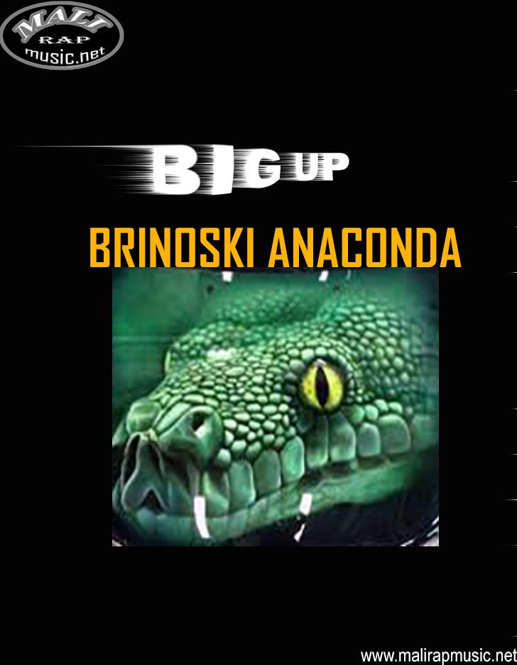 Brinoski Anaconda – BIG UP