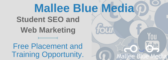 SEO | Marketing – Student Mentoring Program