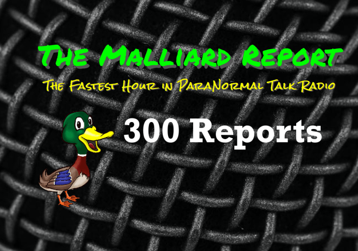 300 reports