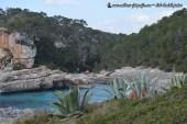 Manch einer überlegt nach Mallorca auszuwandern