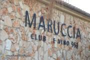 Bodega Maruccia - Vendimia en Llucmajor