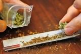 Kommissar Zufall hilft bei Marihuana-Fund