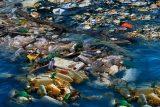 Schluss mit Plastik-Geschirr