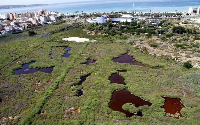Luftbild von Ses Fontanelles auf Mallorca