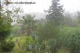 Warnstufe ORANGE wegen Starkregen